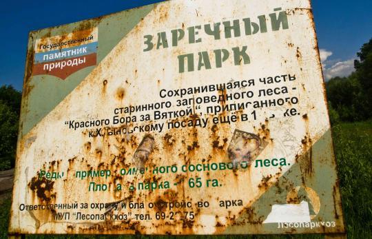 ВКирове объявили карантин побешенству